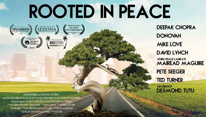 Rooted In Peace Is Rooted In Hope: A Time for Action